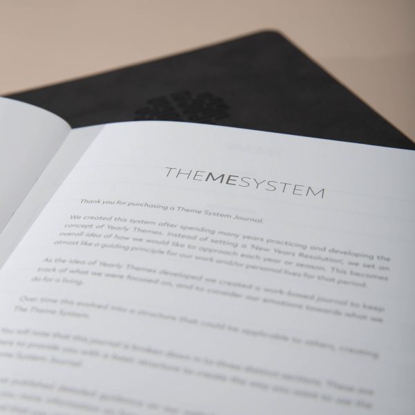 Image of the introduction inside The Theme System